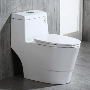 Best Performing Toilets with Soft Close Lid & Dual Flush: WoodBridge T-0001