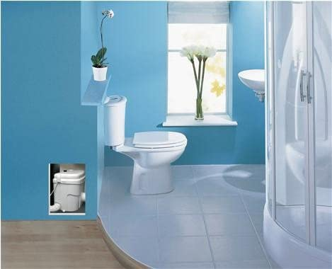 upflush toilet in the blue bathroom