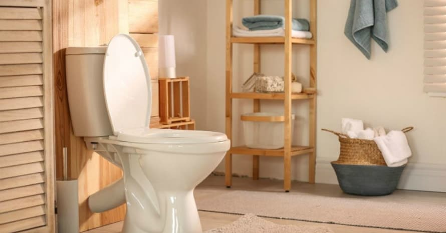 Best Handicap Toilet in 2020: What to Select