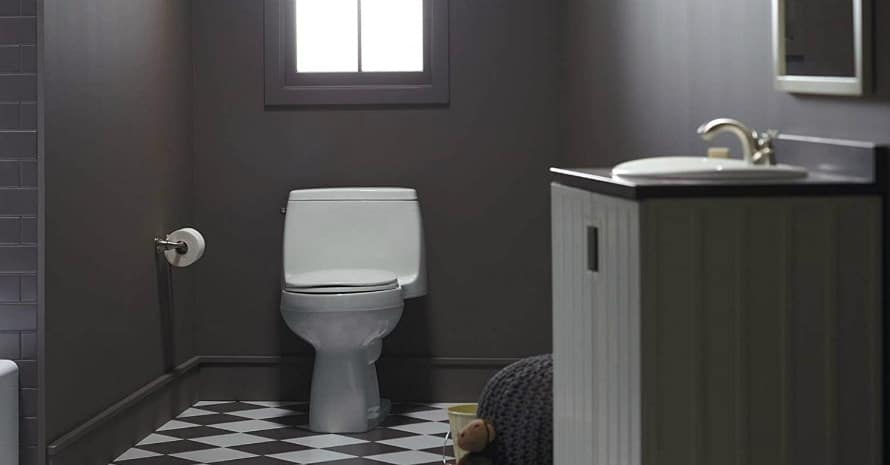 7 Best Flushing Toilets in 2020: Complete Review & Buyer's Guide (THEY CAN FLUSH ANYTHING)