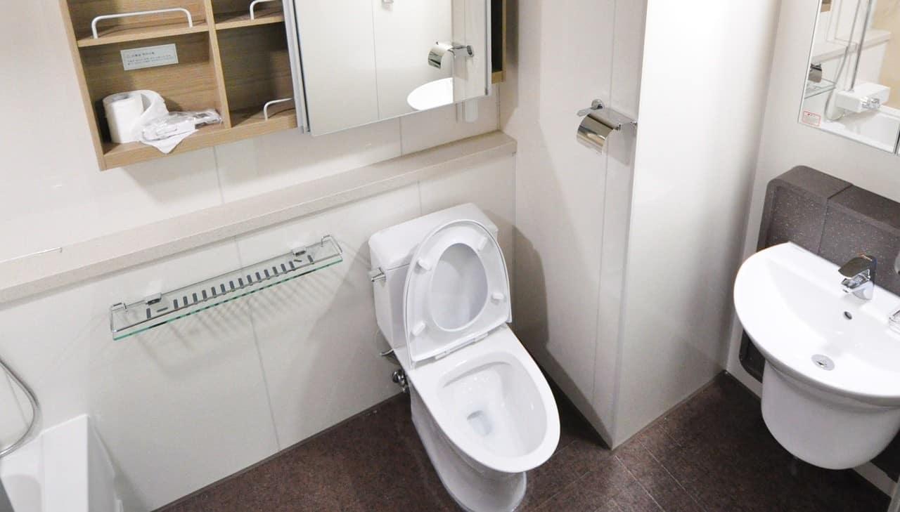 10 inch rough in toilet in restroom