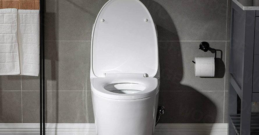 Toilet WOODBRIDGE T-0019