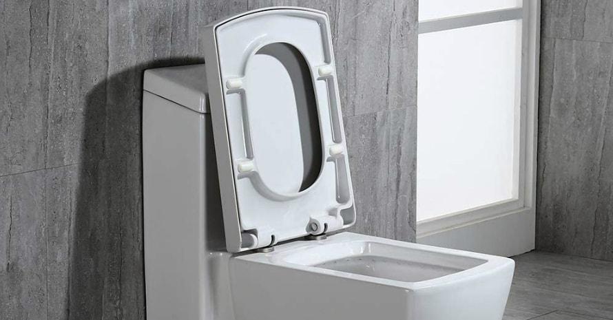 WoodBridge T-0020 Toilet