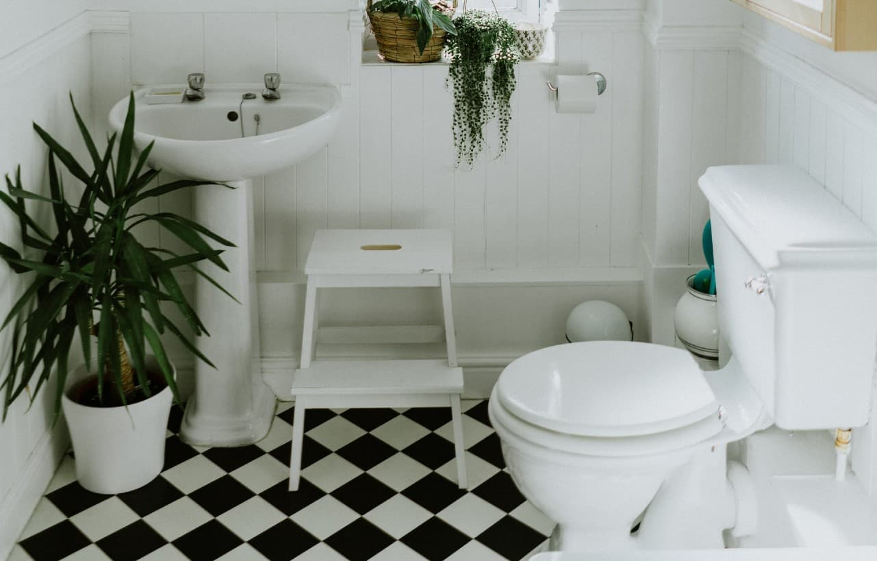 budget toilet in classic bathroom