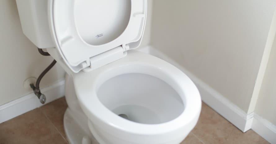 white commercial toilet