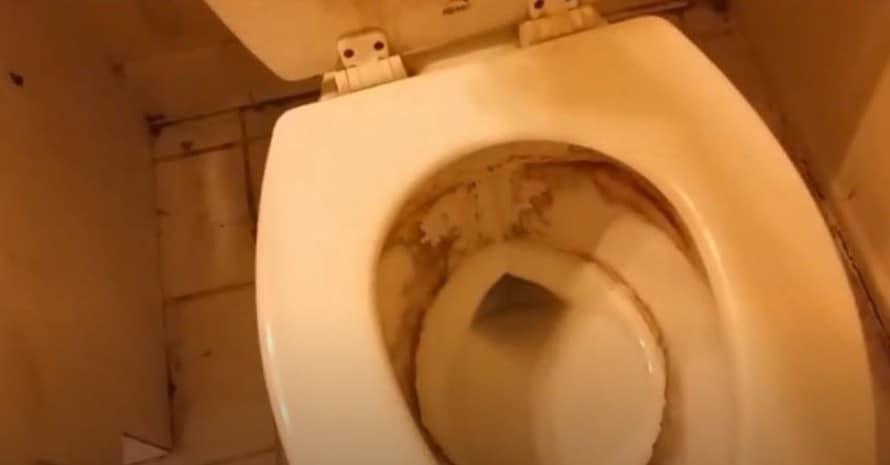 toilet mold ring
