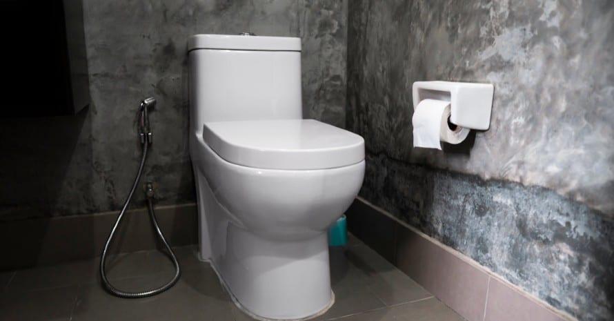 Kohler-Toilet-brand