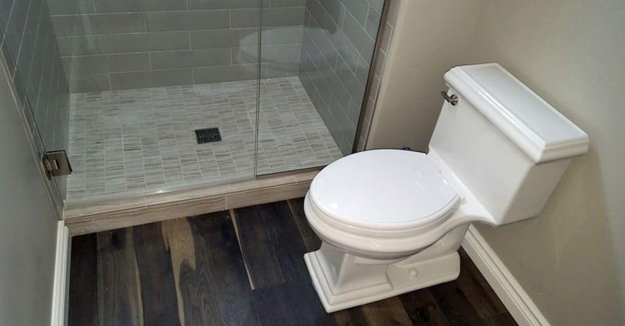 memoirs-toilet