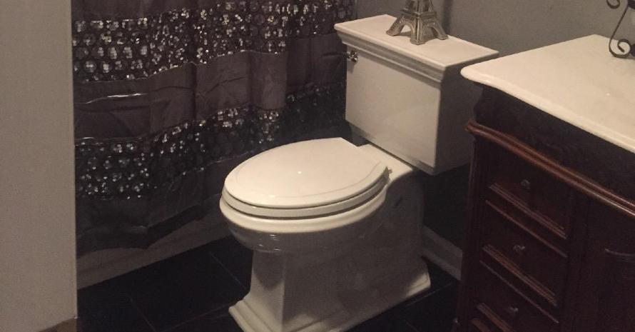 Kohler K-3819-96 Toilet
