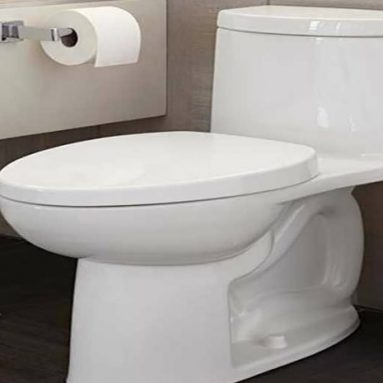 Best One-Piece Toilet: Top 7 Rate and Tips for the Right Choice