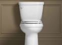 Best Chair Height Toilets for Tall and Seniors