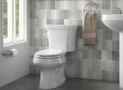 Best Dual Flush Toilets: Tips on Choosing Durable Items