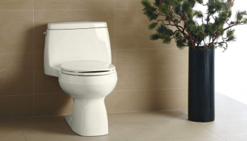 Toto vs Kohler Toilets in 2021: Detailed Comparison