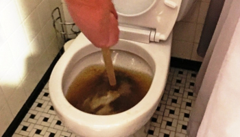 How to Unclog a Toilet with Poop in It: All Details Covered