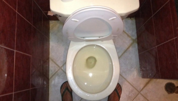 How to Adjust Water Level in Toilet Bowl: Guide with Actionable Tips