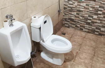 10 Best Modern Toilets in 2021: Complete Reviews and Buyer's Guide