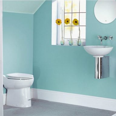 Saniflo Toilet: How to Choose the Right Model for Your Bathroom