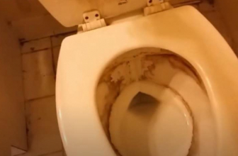 How to Get Rid of Toilet Ring: Top Recommendations