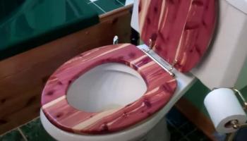 Wood vs. Plastic Toilet Seat: The Sensible Dilemma